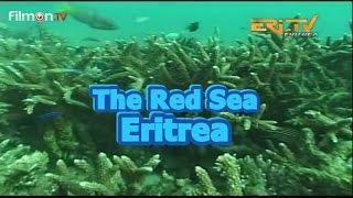 Red Sea Resources (Eritrea)